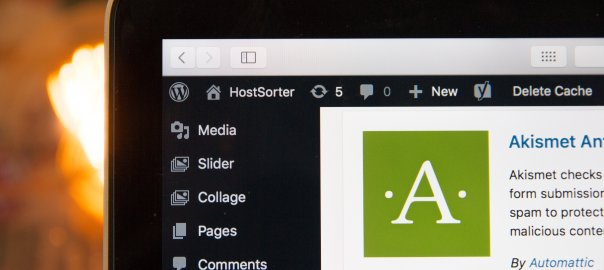 Part of laptop screen showing Wordpress Admin Area